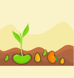 Plants growing under ground vector