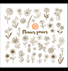 set of vintage doodle sketch flowers on white vector image
