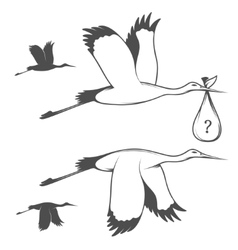 Storks set vector image