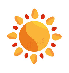 sun summer hot climate weather vector image