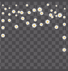 garland made of camomile on transparent backgroun vector image vector image