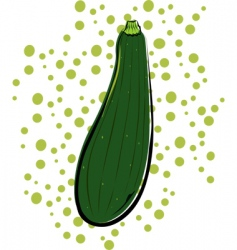 zucchini vector image vector image