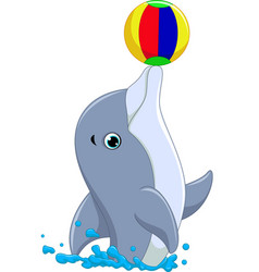 happy dolphin cartoon playing ball vector image