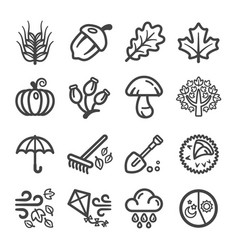 autumn line icon vector image