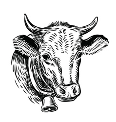 Cow black head vector