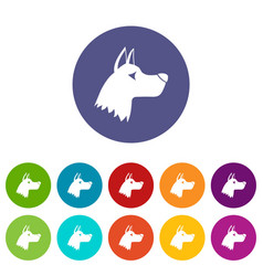 Doberman dog set icons vector