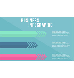 infographic design flat style collection vector image