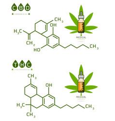 Thc and cbd cannabis molecule formula vector