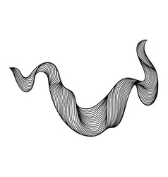wave hair line curl vector image