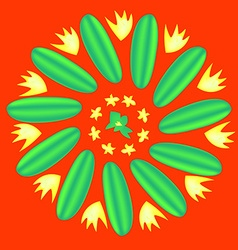 Flower cucumber vector image
