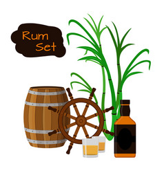 rum barrel bottle sugar cane helm shots in flat vector image