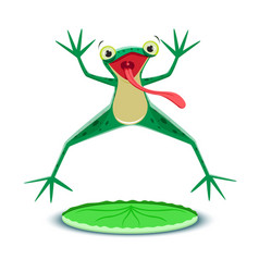 a little frogling is jumping vector image