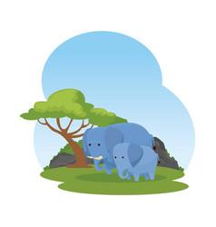 African elephants family in the savannah vector