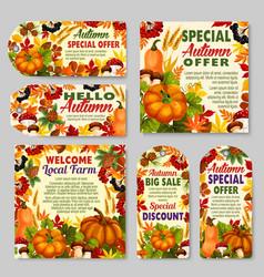Autumn sale shop or farm market discount vector