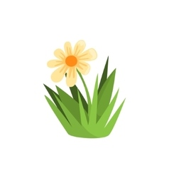 Chamomile Flower Isolated Element Of Forest vector