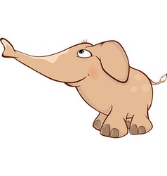 Cute elephant calf Cartoon vector image