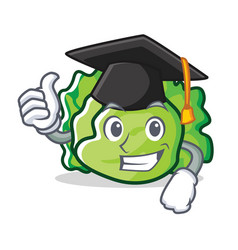 Graduation lettuce character cartoon style vector