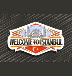 logo for istanbul vector image
