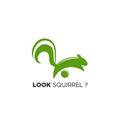 look squirrel logo vector image