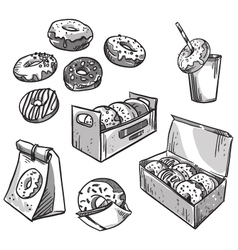 selection of donuts vector image