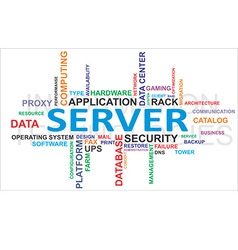 word cloud server vector image