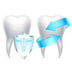 Teeth protection vector image vector image