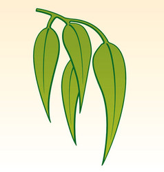 gum leaves vector image