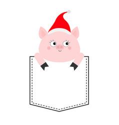 Pig in pocket cute cartoon character santa vector