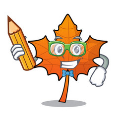Student red maple leaf character cartoon vector