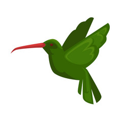 green hummingbird in flying position isolated on vector image