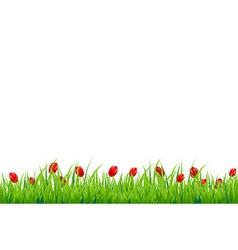 Red Tulip Border vector image vector image
