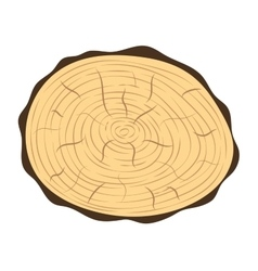 Tree slice isolated vector image vector image