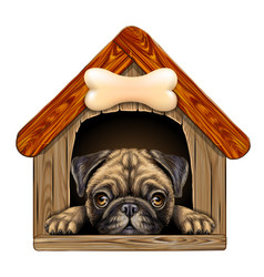 A pug looks out doghouse wall sticker vector