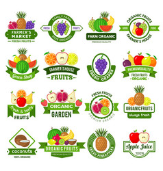 fruits logos decoration badges with healthy vector image
