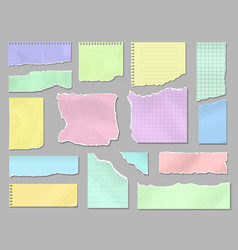 pieces torn colorful blank paper ripped page vector image