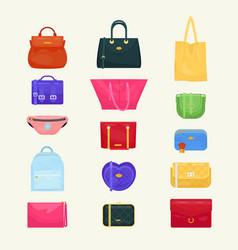 Woman bag girls handbag or purse and vector
