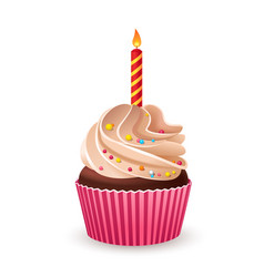 Birthday cupcake with burning candle vector image