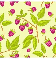 Seamless raspberries pattern vector image vector image