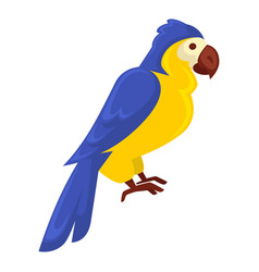 Ara parrot in blue-yellow colors isolated on white vector