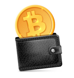 bitcoin in the wallet vector image