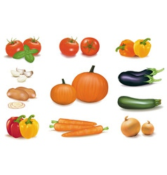 group of vegetables with pumpkins vector image vector image