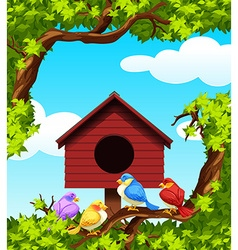 Birds and bird house on the tree vector image