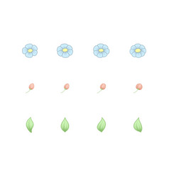 daisy single pastel elements vector image