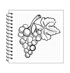 Doodle grapes on spiral notebook paper vector