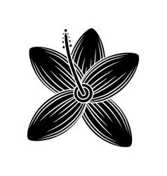 flower wild icon image vector image