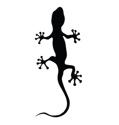 gecko in black silhouette vector image