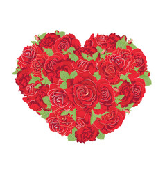 heart made roses vector image