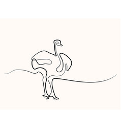 ostrich walking symbol vector image