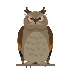Owl sitting on branch flat vector