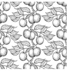 plum branch seamless pattern drawing hand vector image